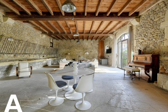 buy-sell-french-mas-in-camargue-french-real-estate-aigues-mortes-nimes-french-real-estate-les-archineurs